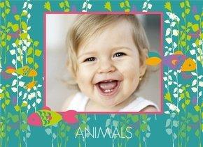 Animals für Kinder