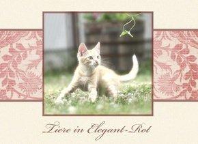 Fotobuch Tiere Elegant Rot