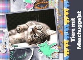Fotobuch Tiere Meschugge 1st