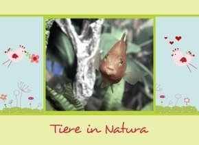 Fotobuch Tiere Natura