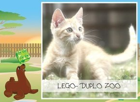 LEGO DUPLO - Zoo für Tiere