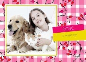 Fotobuch Tiere Picnic