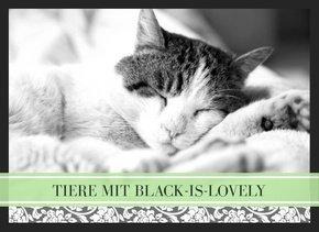 Fotobuch Tiere Black is lovely